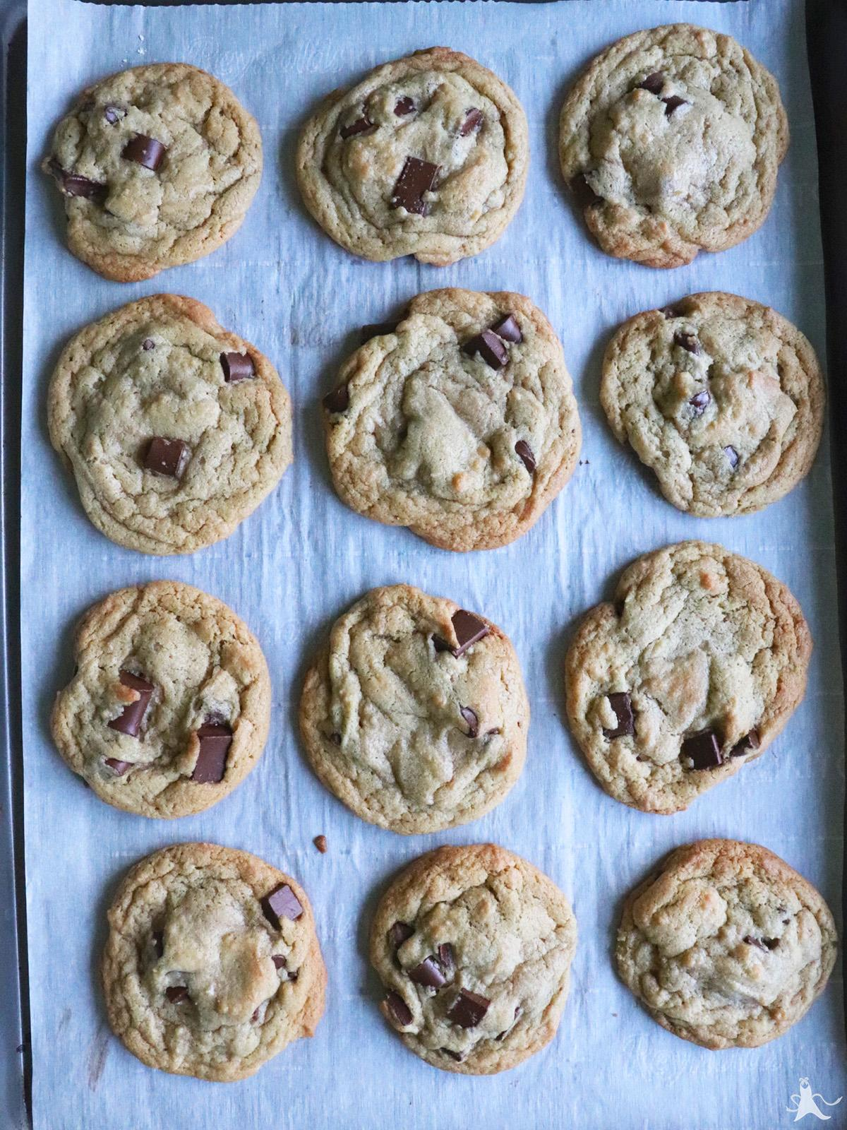 chocolate chip cookies freshly baked on a cookie sheet